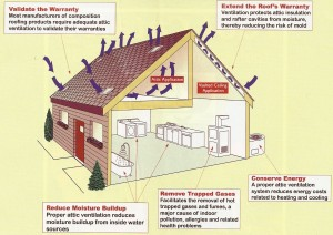 Understanding Ventilation and Roof Vents