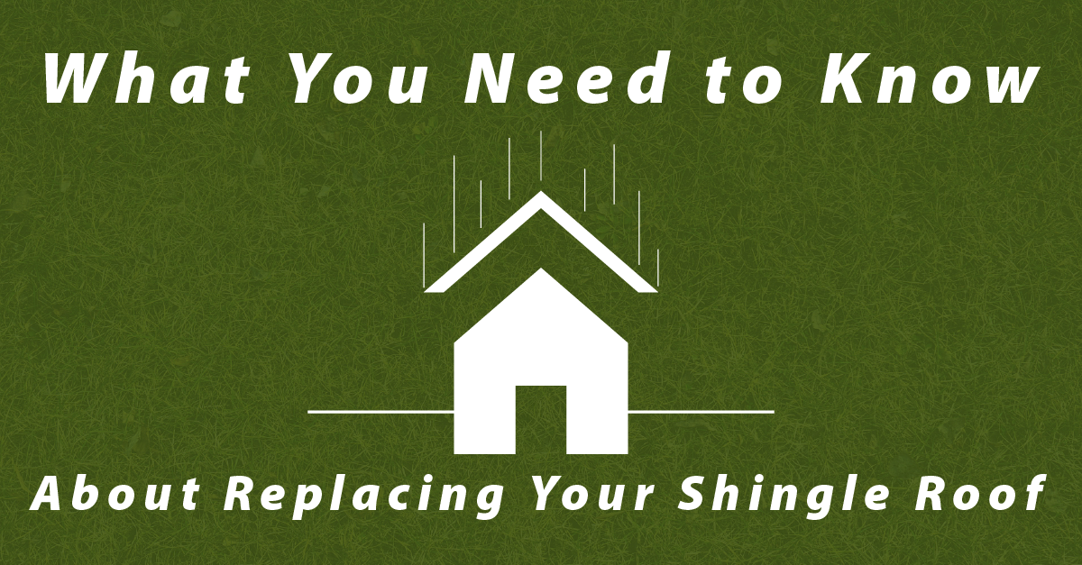 What You Need to Know About Replacing Your Shingle Roof